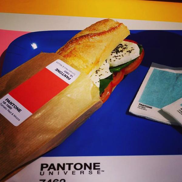 Pantone-Cafe5