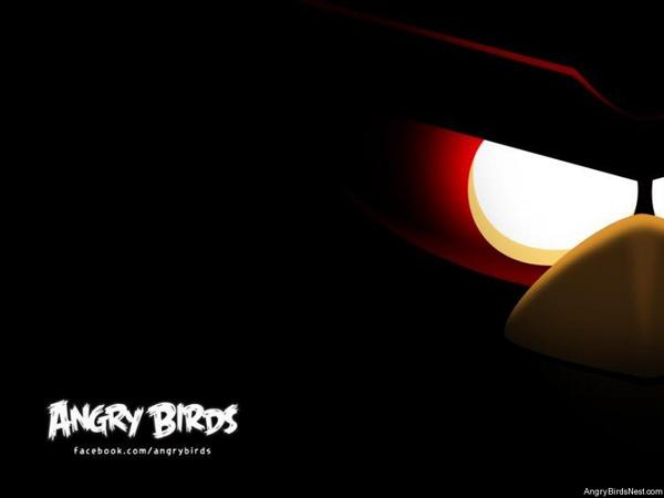 Angry-Birds-Teaser