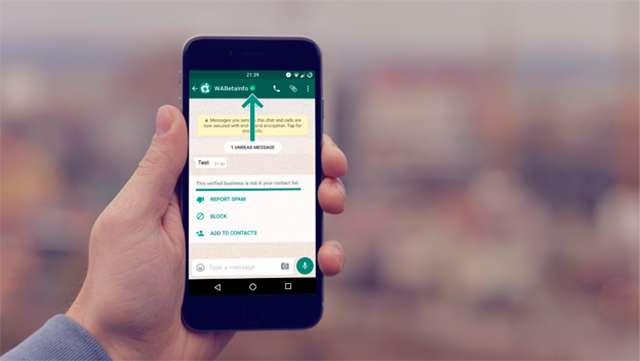 Como criar estratégias de Marketing no WhatsApp